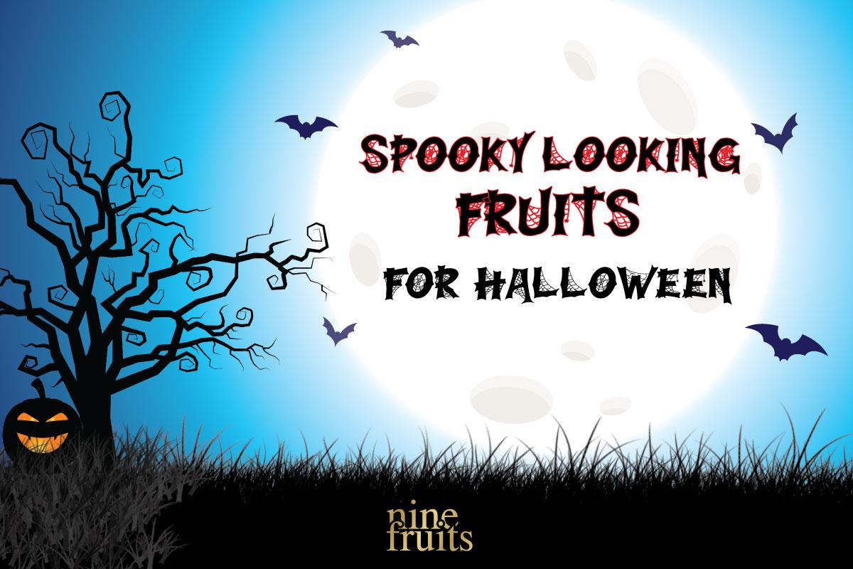 EN-Copy_1200-800_halloween221019